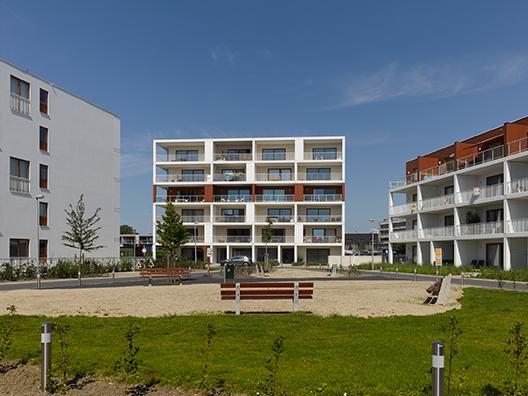 Julien Saelens Park - Brugge